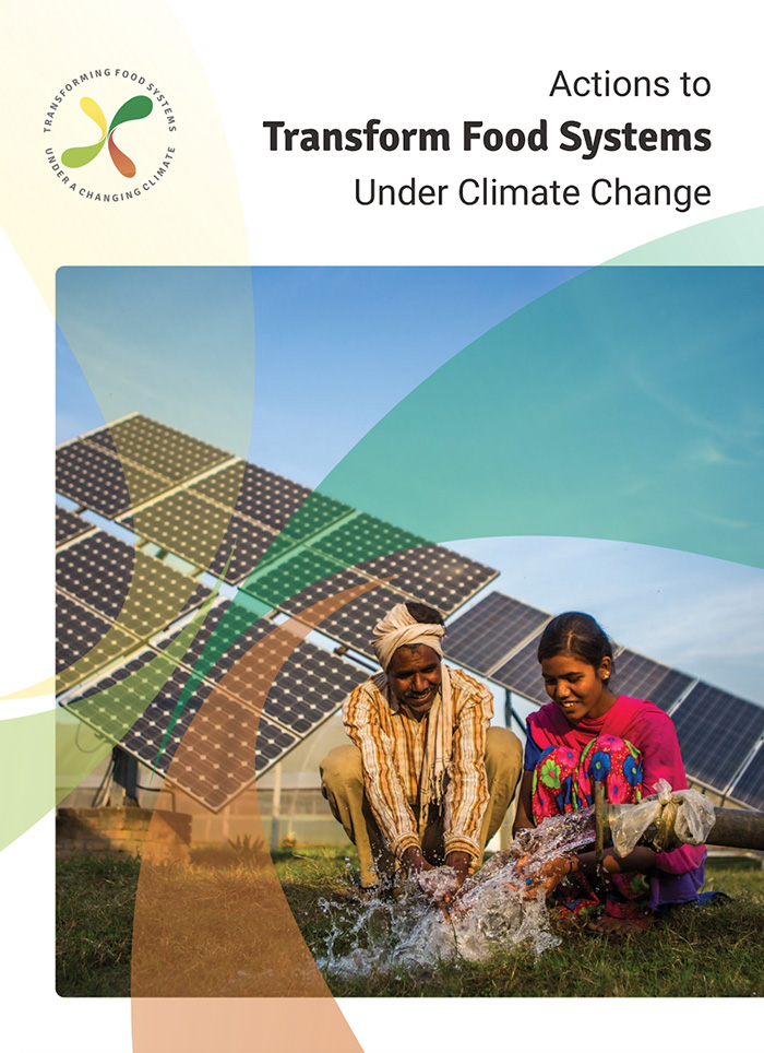 "Report cover design for ""Actions to Transform Food Systems Under Climate Change"""